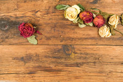 Background wooden with yellow and red withered  roses Royalty Free Stock Photography