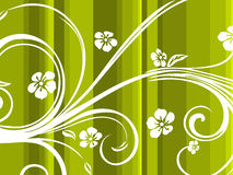 Background wth floral pattern Stock Image