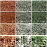 Background wth plants Stock Image