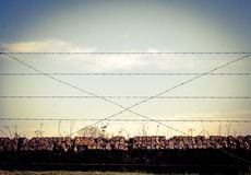 Background WW1 barbed wire and sandbags world war Royalty Free Stock Images