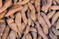 Background Of Yams At A Market Royalty Free Stock Photos