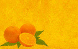 Background of yellow color with oranges Stock Images