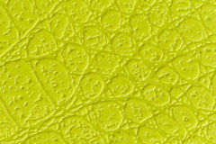 Background of a yellow/green fabric Royalty Free Stock Image