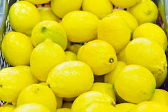 Background of yellow lemon Royalty Free Stock Photo