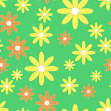 Background with yellow and orange simple camomiles on the green background. Royalty Free Stock Images