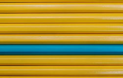 Background of yellow pencils and one different. Individuality concept. stock photo