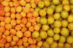 Background of yellow plums and apricots close up Royalty Free Stock Photography