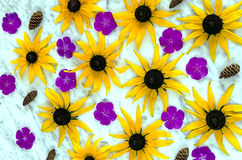 Background of yellow and purple flowers Stock Photography