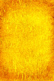 Background yellow reed Royalty Free Stock Images