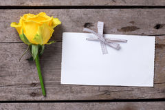 Background with yellow rose flower  and empty tag  on  aged wood Stock Images