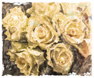 Background with yellow roses. Stock Image