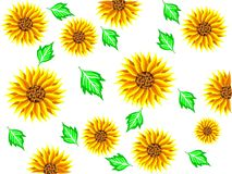 Background of yellow sunflowers flowers with green leaves and behind a white background in vector royalty free illustration
