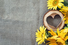 Background with yellow sunflowers and wooden heart on the canvas Stock Photos