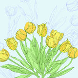 Background with yellow tulips Stock Photo