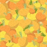 Background of yellow turnips. Vector seamless pattern of vegetab Stock Images