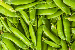 Background of young green peas in the pod Stock Photo