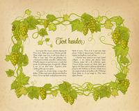 Background for your text with oldest paper and vines in vintage style. vector illustration