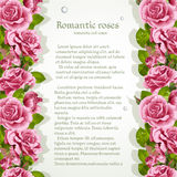 Background for your text with pink roses Royalty Free Stock Images