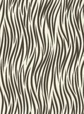 Background zebra Stock Photo