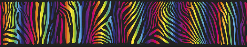 Background with Zebra skin in the rainbow colors Royalty Free Stock Photography