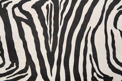 Background with zebra texture Royalty Free Stock Photography