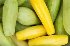 Background with zucchini Stock Photography