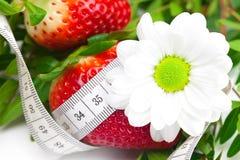 Backgroundbig juicy ripe strawberry and flower Stock Photo