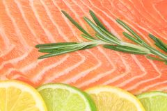 Backgrounde raw red fish Royalty Free Stock Images