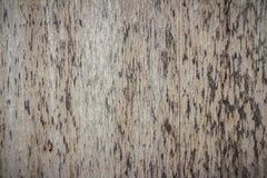 Backgroundrough wood Stock Image