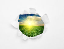 Backgrounds Royalty Free Stock Photo
