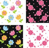 Backgrounds. With tulips and daisies Stock Image