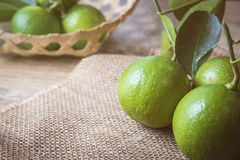 Backgrounds. Close up shot of wet limes. Focus on the central p. Art of sliced lime stock image