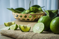 Backgrounds. Close up shot of wet limes. Focus on the central p. Art of sliced lime royalty free stock photography