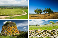 Collage of Sardinian Backgrounds Royalty Free Stock Photos