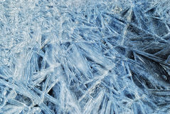 Backgrounds of the first thin ice. Stock Photos