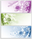 Backgrounds with flowers Stock Images