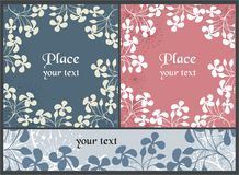 Backgrounds with garden flowers Royalty Free Stock Image