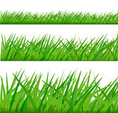 Backgrounds with green grass. Vector stock illustration