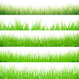 5 Backgrounds Of Green Grass, Isolated On White Background, Vector Illustration. Art Stock Images