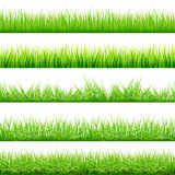 5 Backgrounds Of Green Grass, Isolated On White Background, Vector Illustration. Art Royalty Free Stock Photography
