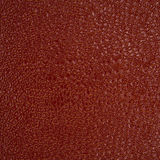 Backgrounds of leather texture Stock Image