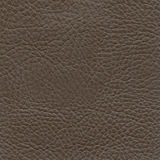Backgrounds of leather texture. Backgrounds of the leather texture for gesign stock images