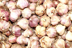 Backgrounds of many purple garlic Royalty Free Stock Image