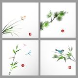 Backgrounds with pine tree, bird, butterfly Royalty Free Stock Images