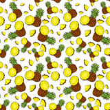 Backgrounds with pineapple and pineapple slices. Vector illustration. Summer. Tropical fruits. Backgrounds with pineapple and pineapple slices. Vector Stock Images