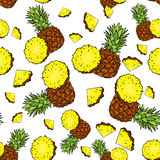 Backgrounds with pineapple and pineapple slices. Vector illustration. Summer. Tropical fruits. Backgrounds with pineapple and pineapple slices. Vector Stock Photos