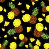 Backgrounds with pineapple and pineapple slices. Vector illustration. Summer. Tropical fruits. Backgrounds with pineapple and pineapple slices. Vector Royalty Free Stock Photography