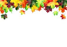 Backgrounds, posters with watercolor maple leaves. Autumn design templates. Hand drawn style. Illustration