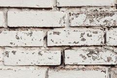 Backgrounds of white bricks Stock Images