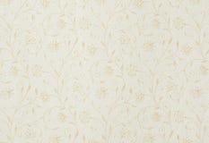 Backgroung abstracto con las hojas y las flores Imagen de archivo